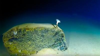 Histórico: Un submarino autónomo ruso llegó al punto más profundo de la Tierra