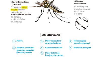 Preocupante aumento de casos de dengue: Pico en Entre Ríos y situación actual