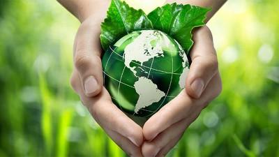 La hora de la Naturaleza: Día Mundial del Medio Ambiente