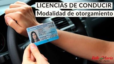 Licencias, modalidad de otorgamiento