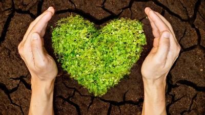 7 de julio: Día internacional de la conservación del suelo