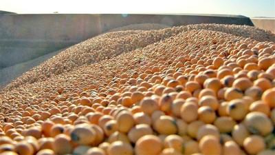 La sequía impulsa a la soja a valores máximos desde 2018