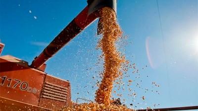 Esperan ingresos de más de US$ 11.200 millones por agroexportaciones
