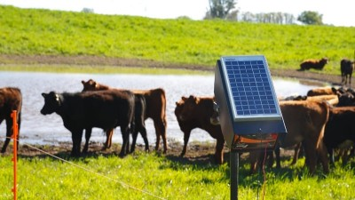 Se entregarán boyeros y bombas solares a productores rurales