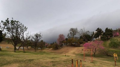 Alerta por tormentas en Entre Ríos: se esperan fuertes vientos y abundantes lluvias