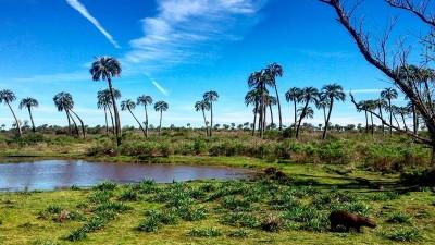 Entre Ríos se consolida como tercer destino turístico nacional