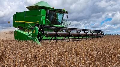 Excesos hídricos demoran el inicio de la cosecha de soja