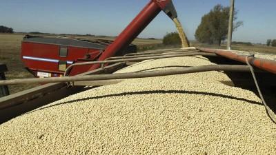 La soja supera el valor de 2012 y alcanza un nuevo precio máximo