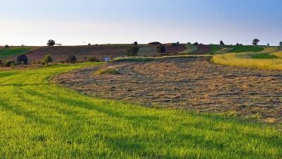 Incentivos fiscales a la conservación del recurso suelo