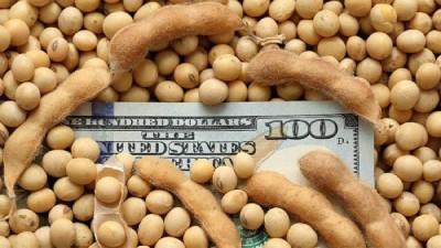 El agro ingresó más de U$S 3.000 millones en mayo, el máximo en 18 años