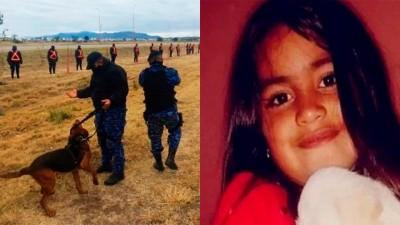 Una semana sin Guadalupe: sigue la búsqueda e investigan al entorno familiar