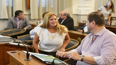 Claudia Gieco participó de dos reuniones de Comisión
