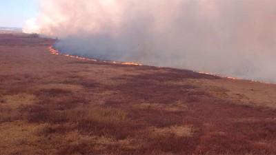 Hay focos de incendios activos y otros controlados en Entre Ríos