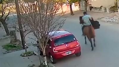 Ladrón escapó a caballo tras romper el vidrio de un auto y robar sillita