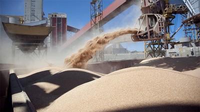 El agro aportaría más de u$s35.000 millones en el segundo semestre