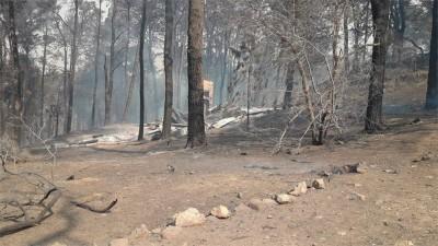 Fuego en sierras cordobesas: Estiman que se quemaron cerca de 5 mil hectáreas