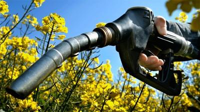 Aumentan precios del biodiesel y bioetanol, usados para fabricar combustibles
