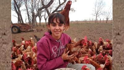 Empezó a criar gallinas en la pandemia: ya tiene 800 y vende huevos en su pueblo