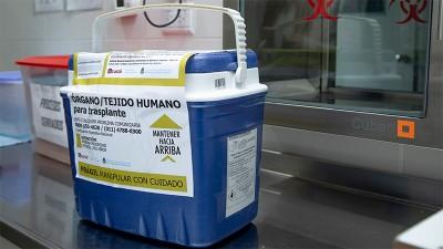 Realizaron más de 1.000 trasplantes de órganos en lo que va del año en el país