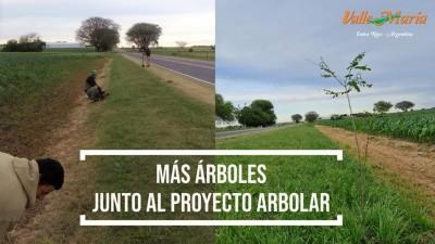 Más árboles junto al Proyecto Arbolar