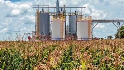 Reglamentaron la nueva ley de biocombustibles, que regirá hasta 2030